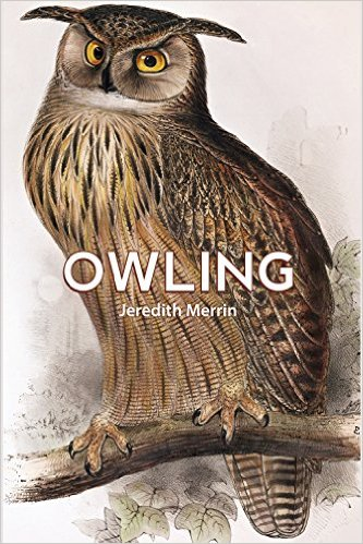 Owling by Jeredith Merrin Cover