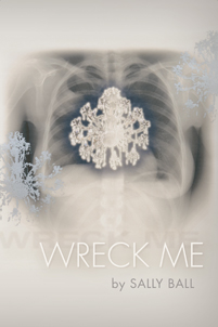wreck_me_cover