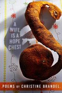 Cover for A Wife Is A Hope Chest