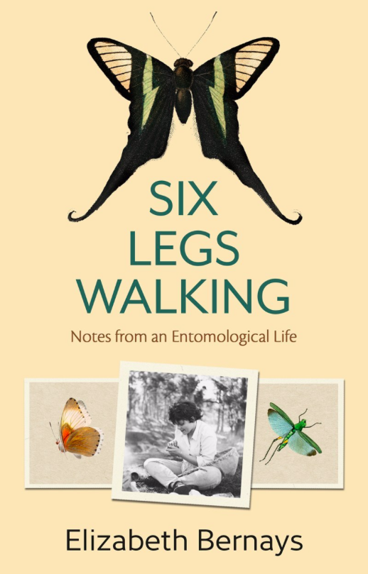 book cover for Six Legs Walking